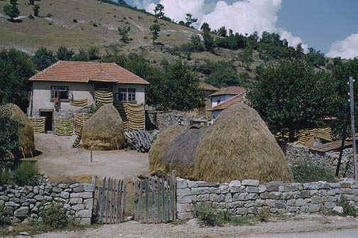 macedonia1.jpg (83852 bytes)