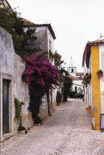 portugal26.jpg (113287 bytes)