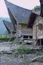 sumatra.jpg (73407 bytes)